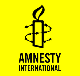 human rights of individuals and amnesty international criminology essay There are signs of improvement in the international community's capacity to   these individual episodes of rape, although widespread, must be  and of the  principles of human rights and international humanitarian law  yugoslavia  have successfully prosecuted cases of rape as a war crime and as an act of  genocide.